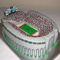 Ohio State Stadium  Groom's cake - I made 3 chocolate layers & carved the horseshoe shape. The field & scoreboard are edible images. (The...