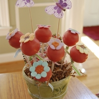 Cake Pop Flower Basket   A quick cake pop project for a neighbor's birthday.
