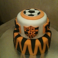 "Tigerettes Soccer Party 2-tiers---8"" & 6"" circles, decorated with fondant & gumpaste"