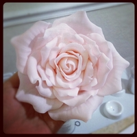 Fondant/gumpaste Rose So much fun to make this beauty! I use the Ateco pearl drop cutter for the petals.
