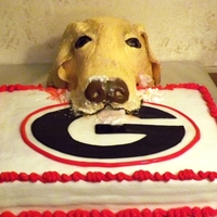 Dog Eating Cake Make this for a groom's cake. The dog is based on a picture of their dog. The wanted to both the dog and his favor football team. So...