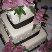 Square Ivory With Orchids Square cake with a brown ribbon and decorated with fresh orchids.