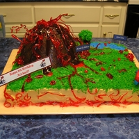 Volcano Birthday Cake   I made this cake for a 9 year old's birthday party.