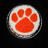 Clemson Birthday This is a birthday cake for my oldest son. He is a huge fan of the Clemson Tigers, a local college football team. The cake is chocolate and...