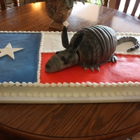 Texas Armadillo This was for a special boy that turned 18 and loves armadillo's. His family threw him a hugh party. White and chocolate sheet cake and...
