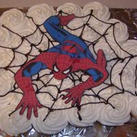 Spiderman_June_2008.jpg Made this for my son's 7th birthday. I was not up to FBCT today, so my husband just printed the picture on the computer.