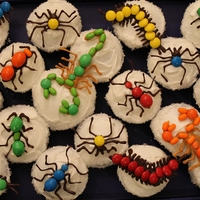 Bug Cupckake Chocolate, M&M's and a few tic tacs...made for my son's class for his 10th birthday