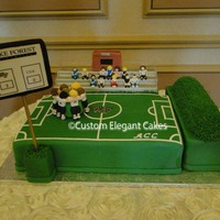 Wake Forrest Grooms Cake