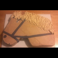 Birthday Girl Wanted A Cake That Looked Like Her Horse For Her Riding Party   Birthday girl wanted a cake that looked like her horse for her riding party.