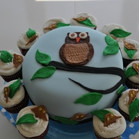 Owl Cake Owl cake made for baby shower