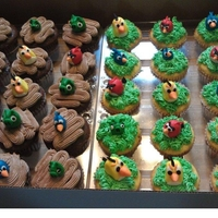 Angry Birds Angry birds out of fondant, buttercream icing.