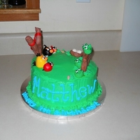 "7Yrs Angry Birds, copied from Craise79 because my son wanted his cake exactly like ""that"". Thanks for the inspiration. Sorry I rushed..."