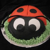 Lazy Ladybug This cake was made for a birthday party I used the soccor ball pan and covered it in fondant. I think lady bugs are too cute so that made...
