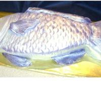 Blue Fish inspiration from collette peters