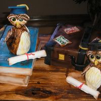 Graduation Owls I made this cake for a client's sons that were graduating high school at the same time. I handpainted the owls and the cake board,...