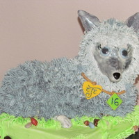 Curstie Turns 16 Teenager who loves wolves turning 16-used Wilton lamb cake pan- added fondant nose and ears.