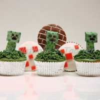 Minecraft Creeper   creepers, bricks and a cake from minecraft.