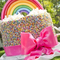 Somewhere Over The Rain{Bow}...there Are Lots Of Sprinkles!   Buttercream cake covered entirely in rainbow sprinkles. Bow is made with fondant (mixed with tylose) as is the rainbow.