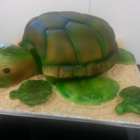 "Turtle Made From 8 Round Cake For A Babys 1 Year Old Birthday Party   Turtle made from 8"" round cake. For a baby's 1 year old birthday party."