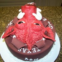 Ar Vs A&m Birthday Cake