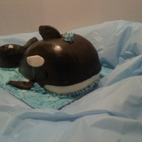 Orca Whale Dark chocolate fudge cake with fudge filling, covered in buttercream and chocolate mmf.