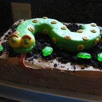 3D Snake This was my nephews 5th bday cake....it was a HUGE hit with everyone, especially the birthday boy! It was fun to make, too. The snake was...
