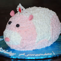 Jilly - Zhu Zhu Pet Little girls favorite Zhu Zhu pet is Jilly.
