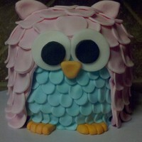 Owl Cake I made this cutie for my 5 year olds birthday party. He was made from 3 6 inch rounds. We loved him and hated to cut him.