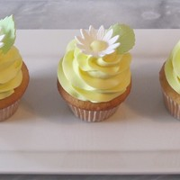 Spring Daisy Cupcakes Thanks for looking!