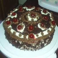 Black Forest black forest with whipped cream and chocolate icing