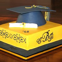 Grad Cake   Cake was done in school colors. Sugarveil Monogram on the front and stencil on the sides