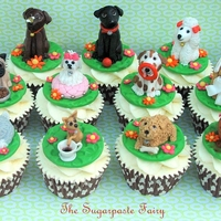 Dog Mad! Doggie cupcakes for my daughter's10th birthday- all her favourite dogs for each of her friends at school.