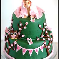 Baby And Owl Cake. Christening cake in green with Baby and owl.