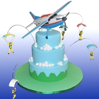 Airplane And Skydivers An Airplane and skydiver cake for my Grandson's 5th birthday. Inspired from skydivers we watch from our backyard. Cessna is RCT with...