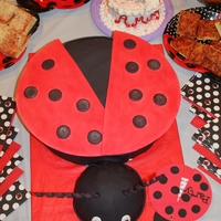 Lady Bug Lady bug cake was made to match the invitation, photographed next to the cake. here's a better picture of the smash cake