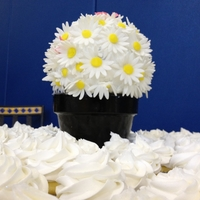 Daisies And Cuppies Sports ball pan sphere set on a real flower pot, surrounded by 100 cupcakes! Daisies made of fondant