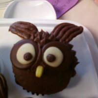Owls!   owl cupcakes replicated from a cupcake book