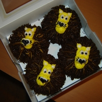 Lion Cupcakes These were for a little girls birthday. She is into lions at the moment. Chocolate cupcakes with chocolate mane and vanilla frosting face...