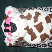 Spotted Cow Cake