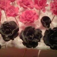 Red And Black Roses *