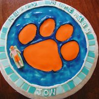 Tigers Fan this cake was for a clemson tigers fan who inspects swimming pools