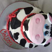 Cow Face Cake Buttercream cake with fondant accents and hand painted cow face. I love him...
