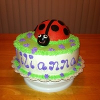 "Ladybug Cake  10"" cake with one half of the ball pan for the lady bug. All buttercream except the black, which is marshmallow fondant. The 10""..."