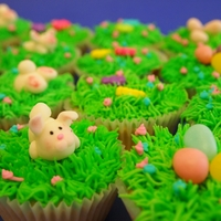 Happy Easter! easter bunny cup cakes ,decorated with candies.