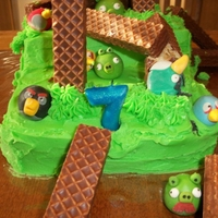 Angry Birds- The Aftermath! My son's 7th birthday cake. It was a bit of a rush job but the kids had SO much fun. We had a working slingshot, that did not make it...