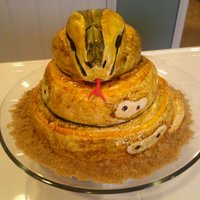 Snake Cake My first attempt at a snake! Ha ha, this one makes me laugh!