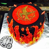 Hunger Games ~ This Cake Is On Fire   Hunger Games themed cake with Mockingjay