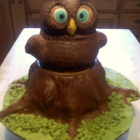 Owl Birthday Cake  My daughter in law loves owls so for her 25th birthday, I made this owl cake for her. Everything is all cake, with the outside being done...