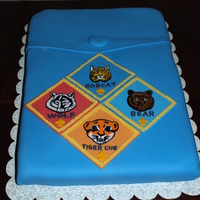 Cub Scout Pocket This is an 11x15 funfetti covered in fondant. The button and patches are fondant as well. The patches are hand painted with gel color. I...