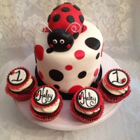 Ladybug First Birthday   Set of ladybug cupcake toppers with a Ladybug topped, polk-dot cake.